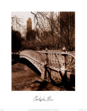 Central Park Bridge 2 Poster par Christopher Bliss