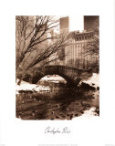 Central Park Bridge IV Plakater af Christopher Bliss