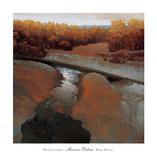 Desert Creek Prints by Marc Bohne
