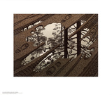 Puddle Prints by M. C. Escher