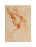Drawing of a Woman Plakater af Michelangelo Buonarroti