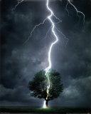 Lightning Prints