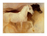 Wild Horses Prints by Richard Murray