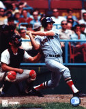 Carl Yastrzemski Photo