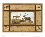 Deer Park Lodge Print by Zachary Alexander