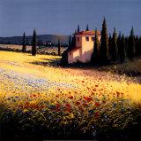 David Short - Summer Villa Obrazy