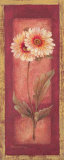 Red Door Gaillardia Prints by Pamela Gladding