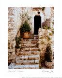 Escalinata de piedra (tamaño reducido; 8x10) Pósters por Allan Bruce Love
