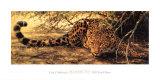 Manchas (detalle) Láminas por Guy Coheleach
