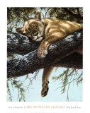 Lake Manyara Lioness Plakat af Guy Coheleach