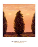 Three Trees, Two Clouds Print by John Beerman