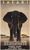Parc national du Serengeti Poster par Steve Forney