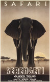 Serengeti Plakat autor Steve Forney