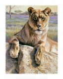 Serengeti Lioness Kunst af Kalon Baughan