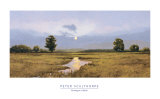 Evening on a Marsh Posters by Peter Sculthorpe