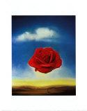 瞑想的なバラ, 1958 ポスター : サルバドール・ダリ