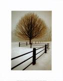 Solitude Prints by David Winston