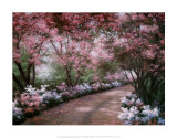 Azalea Walk Poster par Diane Romanello