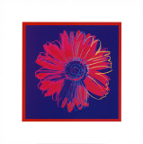 Daisy, c.1982 (Blue and Red) Prints by Andy Warhol