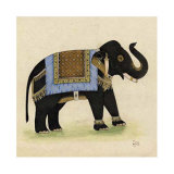 Elephant from India I Poster