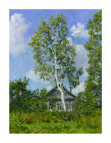 Birch Tree Near Dwelling Giclee Print by Ilya Yatsenko