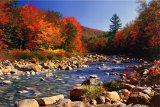 Autumn Brook Plakat