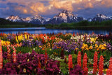 Grand Teton Prints