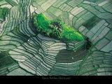 バリの水田の中の小島 ポスター : ヤン・アルチュス=ベルトラン