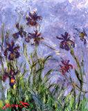 Les iris (détail) Art par Claude Monet