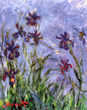 Irises (detail) Art by Claude Monet