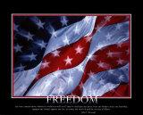 Libertad Láminas
