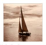 Sailing V Prints