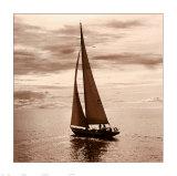 Sailing V Prints