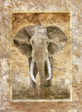 Elephant Print by Monica Reed