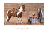 Cowgirl in Heaven Prints by David R. Stoecklein