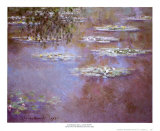 Waterlilies, 1903 Prints by Claude Monet