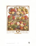 Twelve Months of Fruits, 1732, September Art by Robert Furber