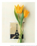 Tulipes et carte postale de la Tour Eiffel Poster par Dorothy Gaubert Pyle