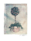 Pink Topiary Prints by Julie Nightingale
