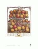 Twelve Months of Fruits, 1732, December Poster by Robert Furber