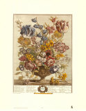 Twelve Months of Flowers, 1730, April Prints by Robert Furber