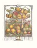 Twelve Months of Fruits, 1732, March Poster by Robert Furber