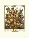 Twelve Months of Fruits, 1732, July Prints by Robert Furber