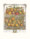 Twelve Months of Fruits, 1732, April Prints by Robert Furber