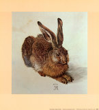 Young Hare Posters by Albrecht D&#252;rer