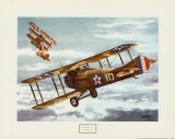 French Spad, 1916 Print by Alfred Owles