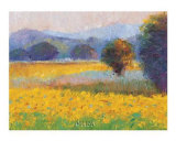 Sunflowers in Provence Posters by Gail Wells-Hess