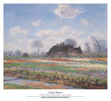 Tulip Fields at Sassenheim Posters by Claude Monet