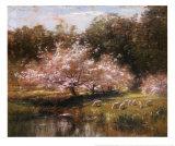 Schafe grasen unter den Apfelblüten Poster von John Appleton Brown