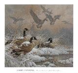 Retraite hivernale Affiches par Larry Fanning